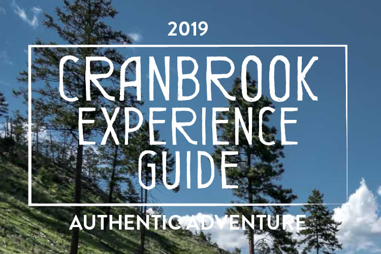 2019 Experience Guide