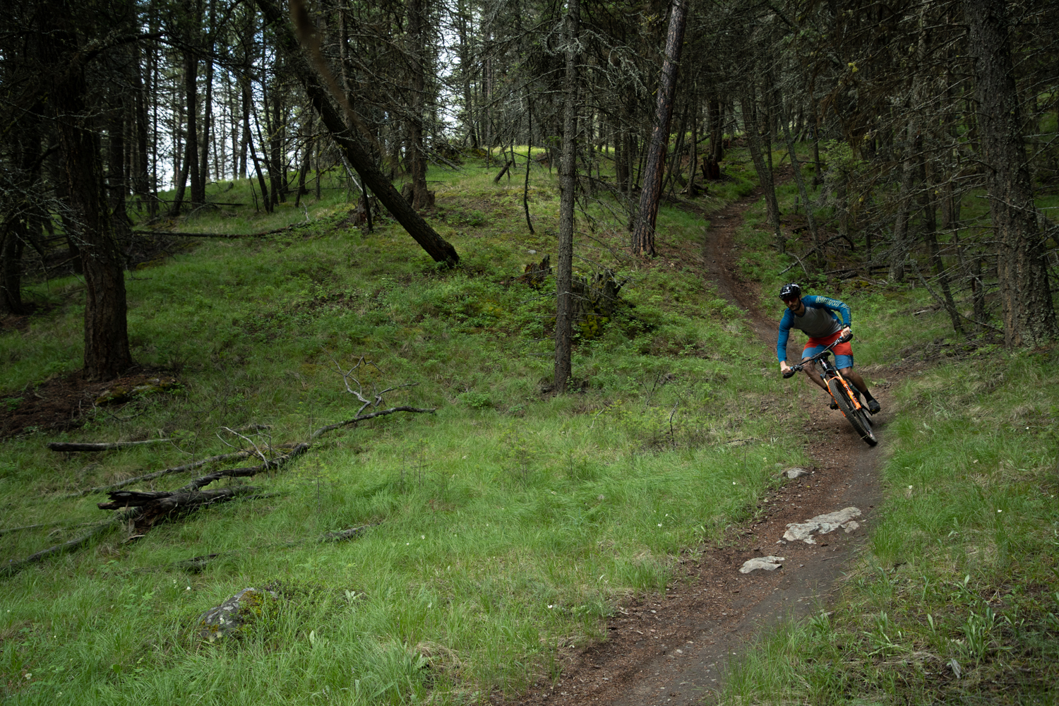 Riding in the Cranbrook Community Forest